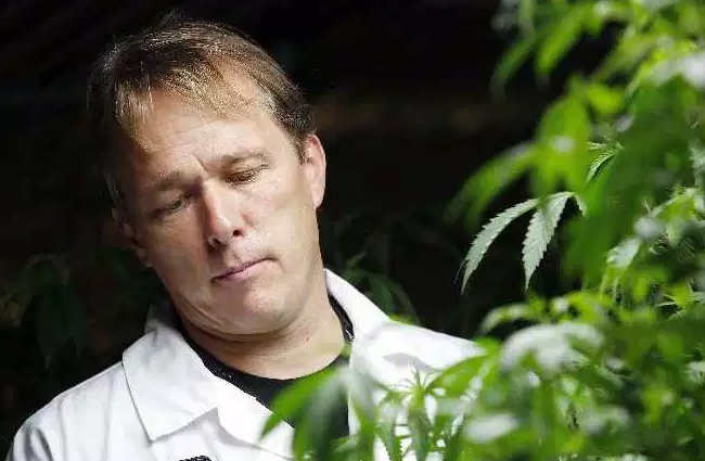 """Canopy Growth Corp (TSE:WEED) (OTCMKTS:TWMJF) (FRA:11L1) CEO Bruce Linton weighs in on the mainstream media's inane fear mongering on recreational marijuana legalization in Canada, dismisses dispensary operators who have nonetheless been empowered by the discovery of pesticides in ACMPR growers' product, and thinks """"hanging is too good"""" for ACMPR operators who break the rules governing pesticide use."""